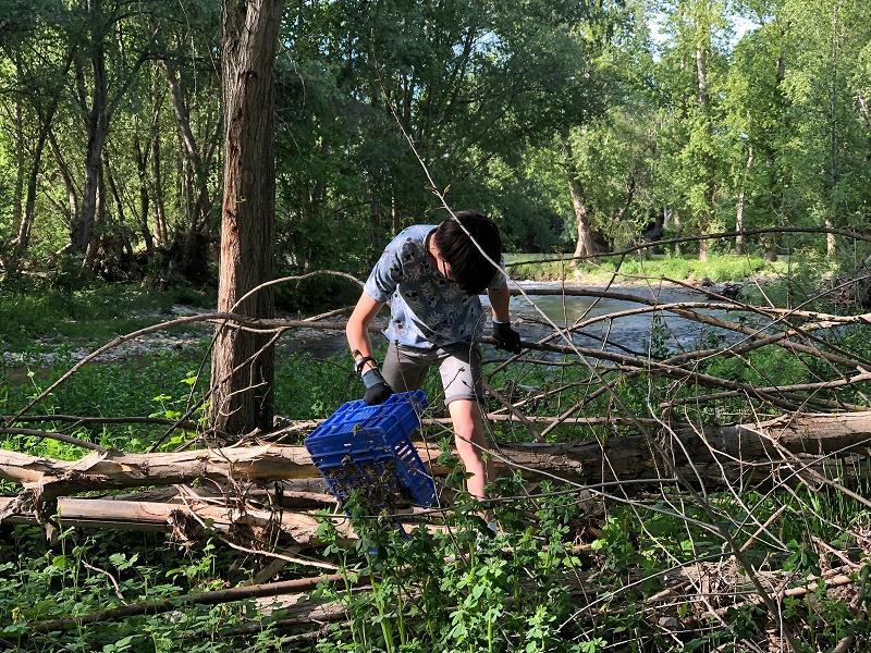 Limpiamos el río Iregua